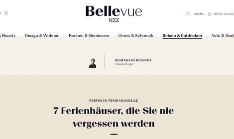 Online Veröffentlichung in der Bellevue-NZZ